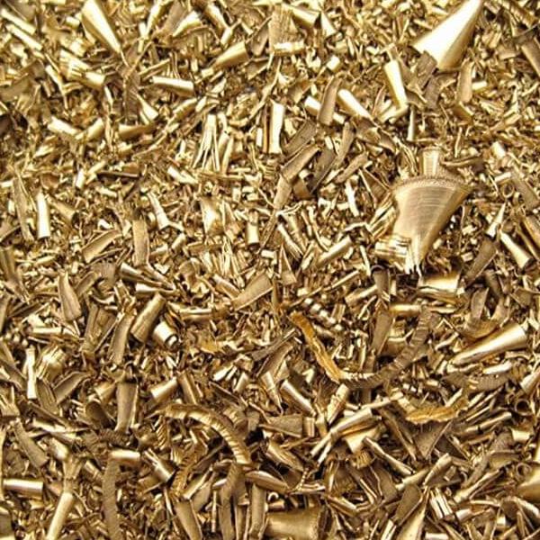 Sarı talaşı